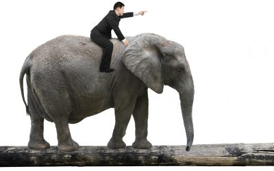 Influence Patient Decisions by Talking to the Elephant